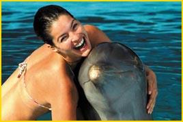 Viajes a Punta Cana - Comparta con una de las especies más amistosas con los humanos... los delfines!