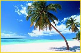 Viajes a Punta Cana - Playa Catalonia Bavaro