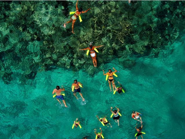 Marinarium Tour de lo más recomendado en Punta Cana.