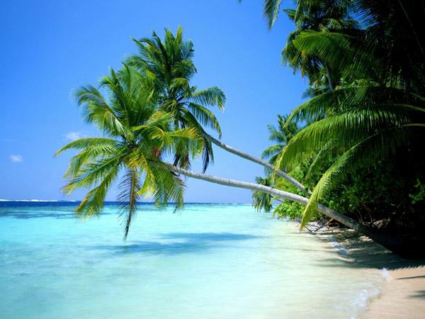 48d896fa9fc13 Información sobre las playas de Punta Cana